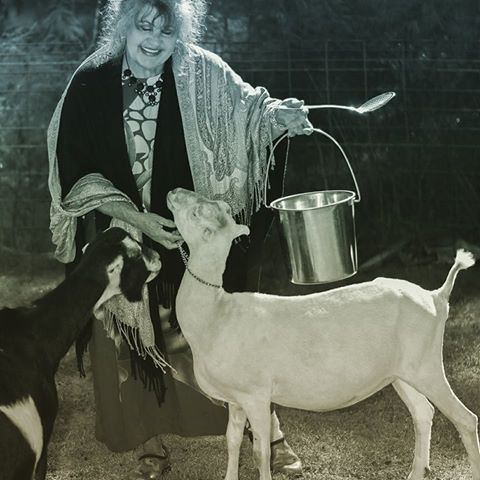 Chris Holland with goats and feed bucket.